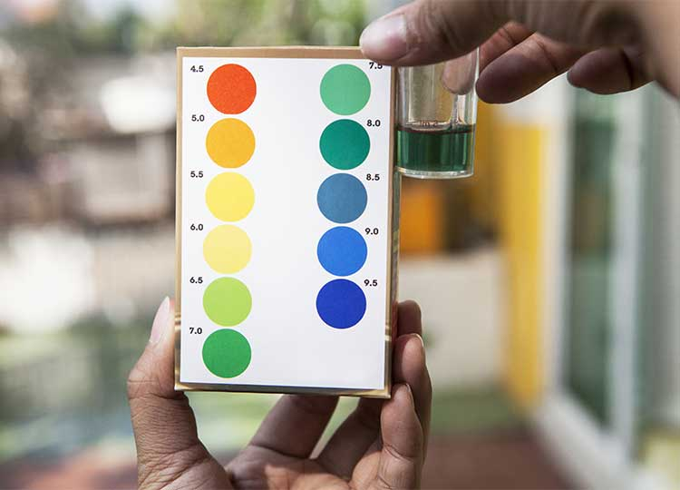 Acidity Scale with Glass of Water