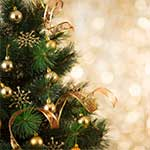 Christmas Tree with Golden Lights
