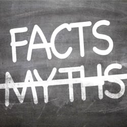 facts vs myths written out on a chalkboard