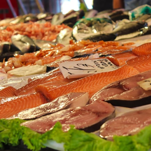 an assortment of seafood containing omega-3 fatty acids.