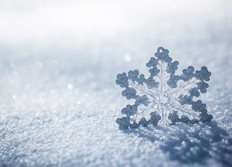 Snowflake on ground covered with snow